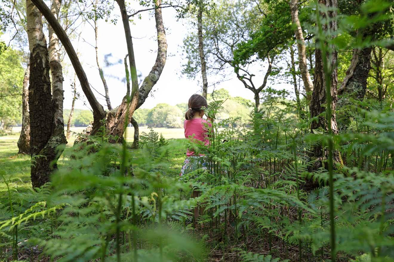 Girl in Ferns - New Forest