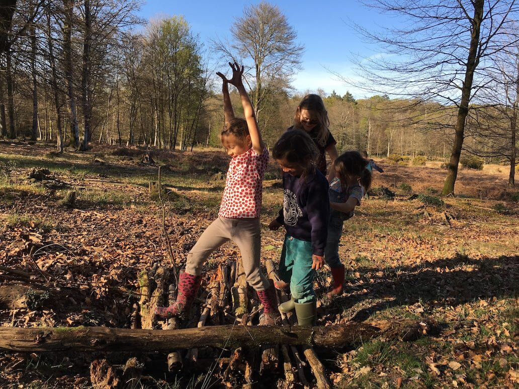 Fun for all the family in the New Forest